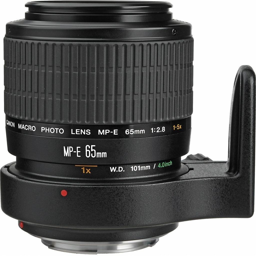 Canon MP-E 65mm 1:2.8 1-5x Macro Photo