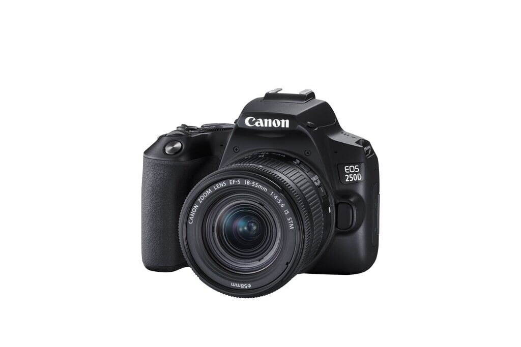 Canon EOS 250D inkl. EF-S 18-55mm 1:4-5,6 IS STM und EF 50mm 1:1,8 STM