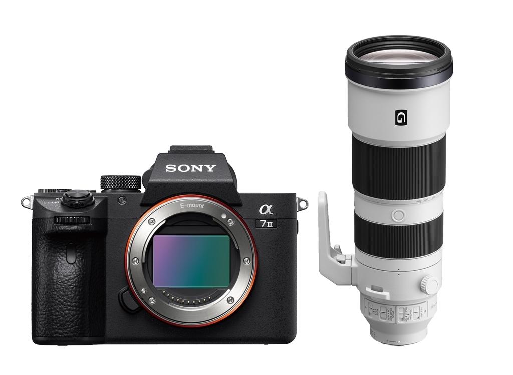 Sony Alpha 7 III (ILCE7M3B) + SEL FE 200-600mm 1:5,6-6,5 G OSS (SEL200600G)